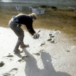 Joel shooting bear tracks on Admiralty Island, southeast Alaska.