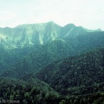 Santa Marta crater, Tuxtlas Mountains - in the late 1980s this forest was still mostly intact.