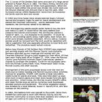 history panel (click to enlarge)